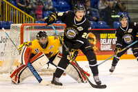 Victoria Grizzlies vs Vernon Vipers, Nov. 16, 2014