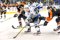 Victoria Royals vs Medicine Hat Tigers, Jan. 20, 2016