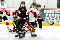 Saanich Braves vs Victoria Cougars, Jan. 30, 2015