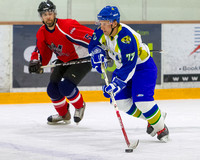 2014 Battle of the Badges, SPD Watchdogs vs VICPD Capitals, Mar. 25, 2014