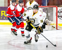 Victoria Grizzlies vs Cowichan Valley Capitals, Jan. 13, 2015