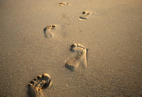 Footprints in the Sand, St. Lucia