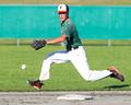 2013 BC Senior Men's Baseball Provincials