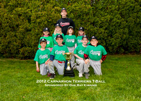 T-Ball Terriers