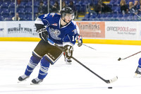 2013-2014 Victoria Royals Hockey Club