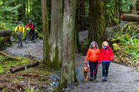 CRD Parks - Sooke Hills Wilderness Trail, June 2017