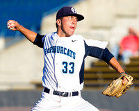 2013 Victoria HarbourCats Baseball Club