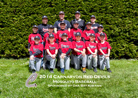 Mosquito Red Devils