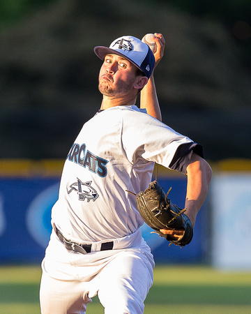 2015 Victoria HarbourCats Baseball Club