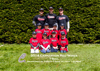 T-Ball Red Wings