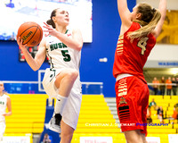 2017 U Sports Women's National Basketball Championships